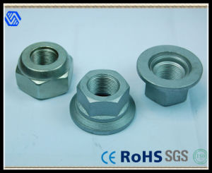 Wheel Lug Nut (BL-0102) pictures & photos