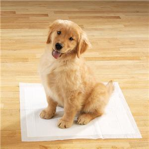 High Quality Disposable Pet Pads/Latest-Model Pet Pads for Pet Use pictures & photos