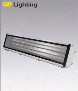 T5/T8 Tunnel Light for Outdoor/Tunnel/Subway Lighting (CTT552) pictures & photos