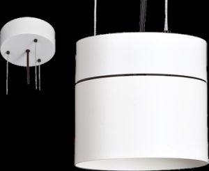 LED Indoor Classic Aluminum Chandelier (DD103)