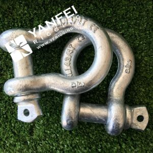 6times Hot DIP Galvanized G2130 Bow Shackle with Safety Pin pictures & photos