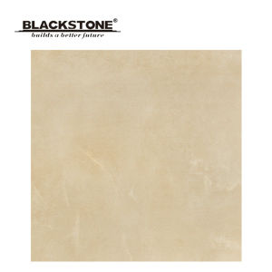 600X600mm High Quality Rustic Tile Matt Surface (BCT02) pictures & photos