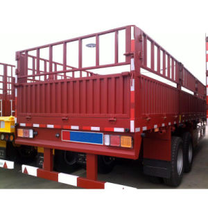 ISO CCC Tri-Axle Side Wall Trailer with Gooseneck