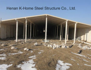 Prefabricated Raised Chicken House Farm pictures & photos