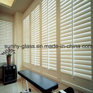 Float Tinted Patterned Louver Glass/Shutter Glass From Sunny Glass pictures & photos