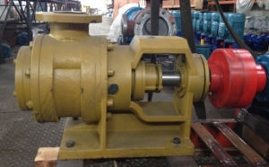 Nyp320 Cast Iron Gear Pump pictures & photos