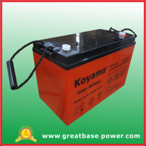 Lead Acid 12V100ah Battery/Rechargeable Maintenance Free Battery pictures & photos
