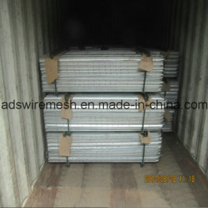 Austrilian and Newzeland Galvanized Star Pickets pictures & photos