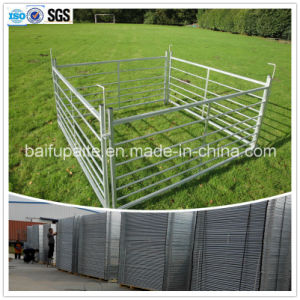Wrought Iron Sheep Fence with Pins Fence Panel pictures & photos