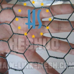 Hexagonal Chicken Wire Mesh pictures & photos