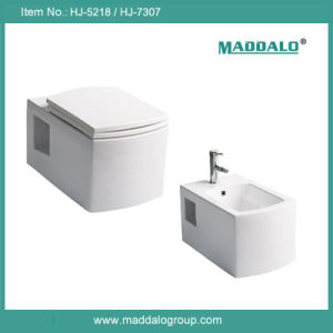High End Nano Ceramic Square Toilet Bidet Set (HJ-5218TD)