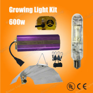 Hydroponic Growing Light Lamp 600W Mh Kits pictures & photos