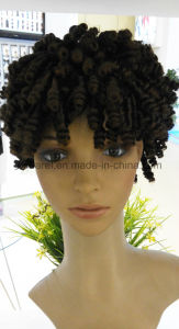 Afro Twist Synthetic Hair Wigs pictures & photos