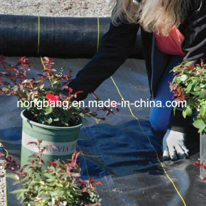 70GSM Black PP Woven Weed Barrier pictures & photos