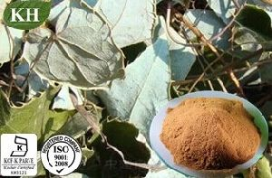 Kingherbs′ 100% Natural Epimedium Extract/Epimedium Brevicornum Extract pictures & photos