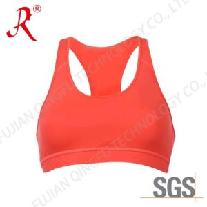 Fashion Design Gym/ Sports Bra (QF-S312) pictures & photos