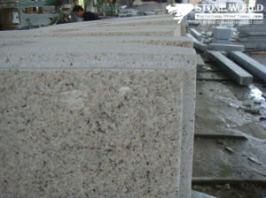 Granite Tiles for Outdoor Walls (CS098) pictures & photos