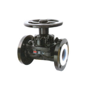DIN Standard Chemical Process Valves pictures & photos