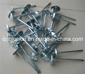 Cheap Umbrella Head Smooth Roofing Nails