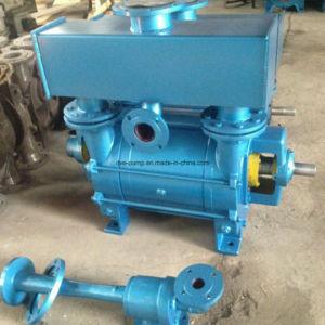 China Manufacture Water/Liquid Ring Vacuum Pumps 980rpm pictures & photos