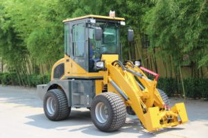 Wl100 Mini Tractor with Wheel Loader for Europ pictures & photos