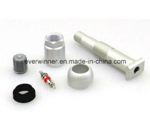 Tire Pressure Sensor TPMS TPS Valve Stem Schrader Style 20020ak Complete Kit pictures & photos