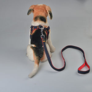 Fashion Stretched Durable Leather Dog Clothing Suit Dog Leashes pictures & photos