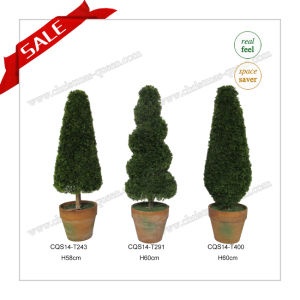H33-60cm Many Size Boxwood Topiary Bonsai Artificial Plants pictures & photos