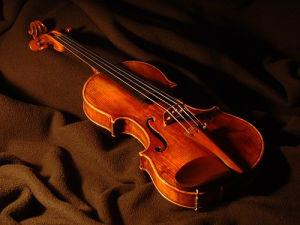 Student Model Violin