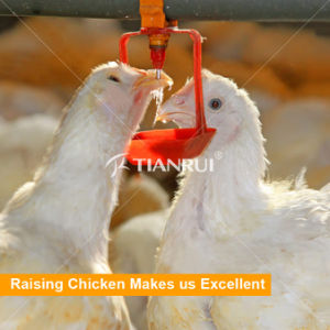 Good Design Automatic Poultry Nipple Drinking System pictures & photos