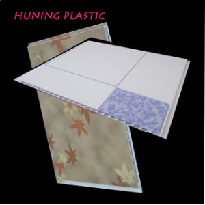 Normal Printing PVC Panel (P25-60) pictures & photos