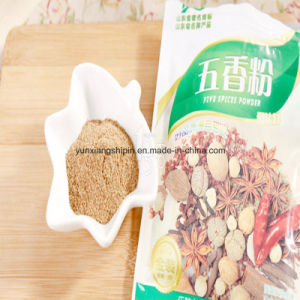 Five Spice Powder, 5-Spice Factory Best Price