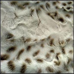 Jacquard Vest Faux Fur pictures & photos