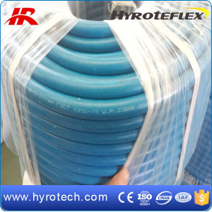 Manufacturer of GOST18698-79 Rubber Hose pictures & photos