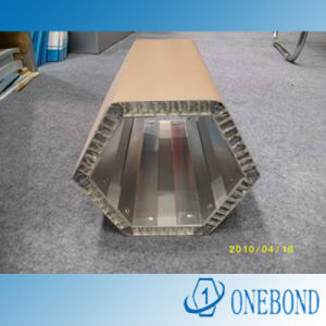 Difference Shape Aluminum Honeycomb Panel pictures & photos