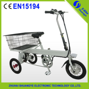 Economic Price Electric Tricycle From China Shuangye pictures & photos