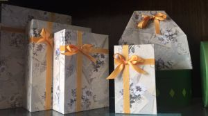Beautiful Printed Paper Boxes for Gifts (FLB-9316) pictures & photos