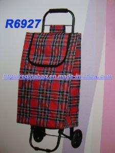 Shopping Trolley, Shopping Bag (YC-0027) pictures & photos
