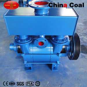 Roots Water Ring Vacuum Pump pictures & photos