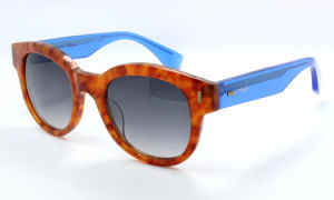 The Hight Quality Sunglasses (C0123) pictures & photos