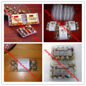 Wholesale Clear Pet Plastic Quail Egg Trays for Package pictures & photos