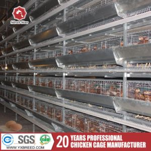 Agriculture Machinery Equipment New H Type Layer Chicken Cage Design pictures & photos