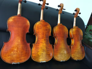 Factory Produced High Quality Gloss Finish 4/4 Violin pictures & photos