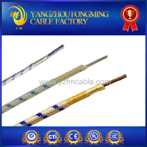 1.0mm2 Fiberglass Insulated Braided Electric Wire pictures & photos