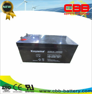 Np250-12 12V 250ah Storage UPS Battery for Vending Machines pictures & photos