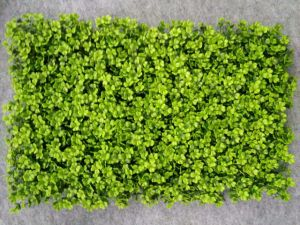 Artificial Plants and Flowers of Artificial Grass Gu20170226095920 pictures & photos