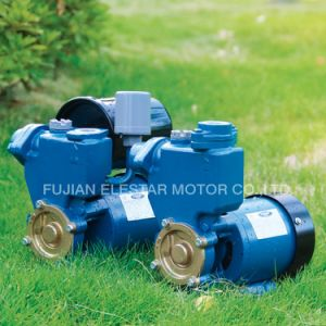 Elestar Brand High Quality Water Pump Qb Series pictures & photos