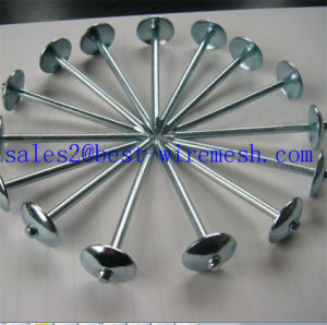 Roofing Nails with Umbrella Head/Steel Twisted Shank Roofing Nail pictures & photos