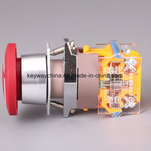 Emergency Keyway Push Button Switch with Drilling 22mm pictures & photos