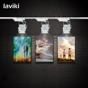 High Quality LED COB Track Light with 20-30W pictures & photos